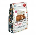 Felting Kits - Medium
